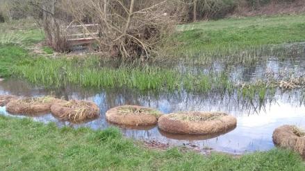 Coir rings in the pond